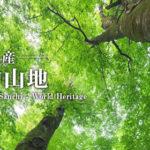 世界自然遺産、白神山地ってどんなところ?